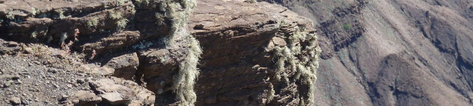 Photo of Cliffs at Prosperous Bay Plain